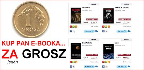 Książki Sowy w Virtualo