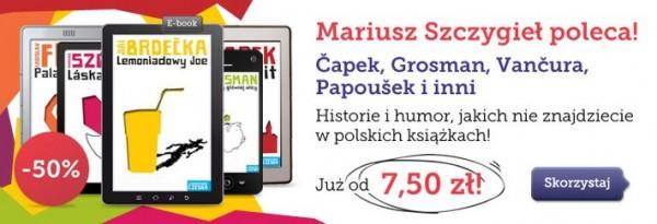 >Literatura Czeska