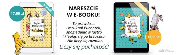kubus-PORTAL-NOWY-1-KSIAZKA