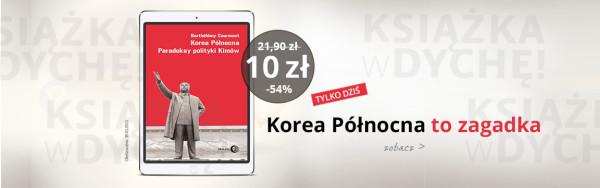 korea-PORTAL-NOWY-w-dyche