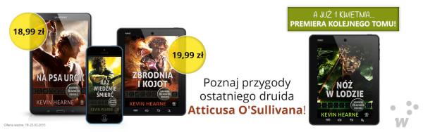 druid_PORTAL_kopia
