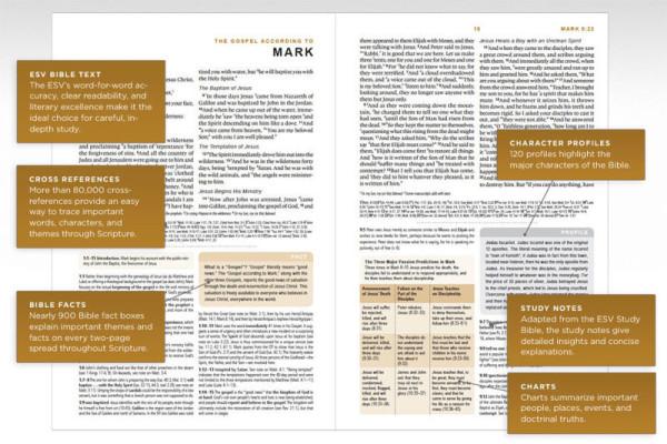 pol_pl_ESV-GLOBAL-STUDY-BIBLE-10145_3