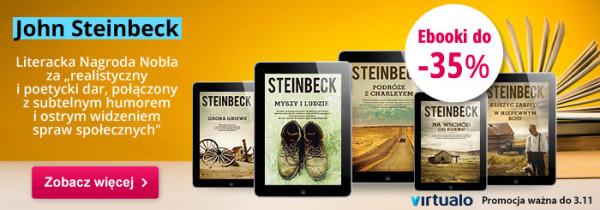steinback_std1
