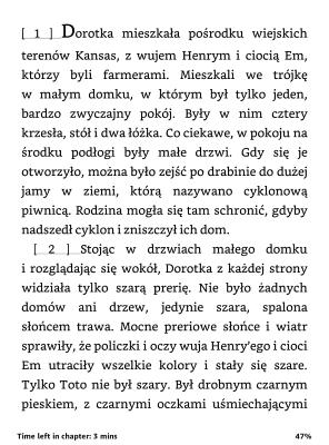 czarnoksieznik-oz-pl1